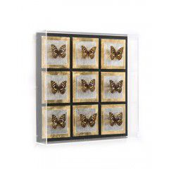 Hilton Head Furniture Store - John Richard Butterfly Grid I
