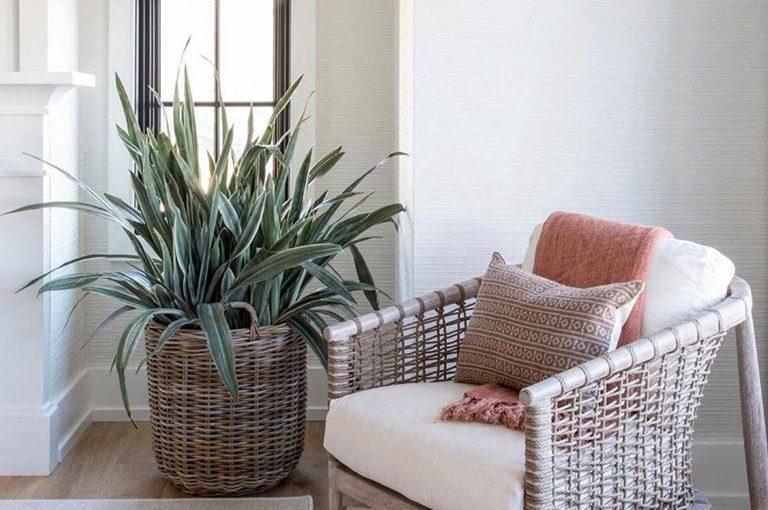 Hilton Head Furniture Store - Today's Fashion: PALECEK